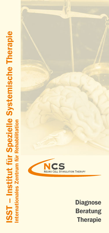 NCS-Flyer S.1